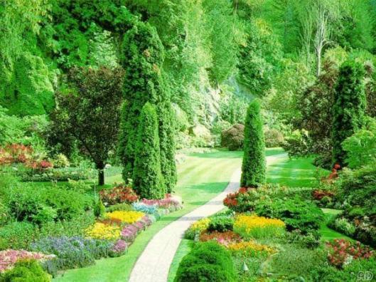 Un jardin secret merveilleux...